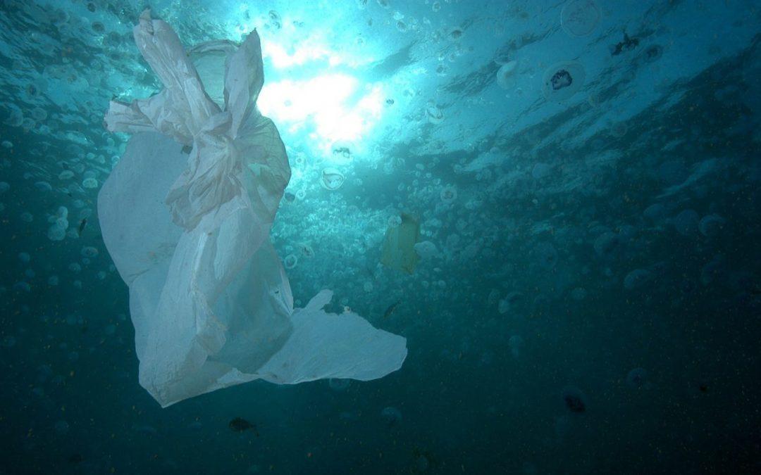 Satélites trasladan en tiempo real la ubicación de los plásticos en el océano